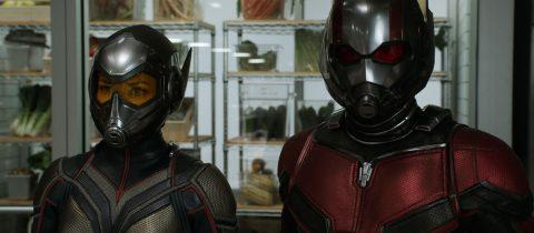 Ant-Man et la Guêpe – Micro Marvel