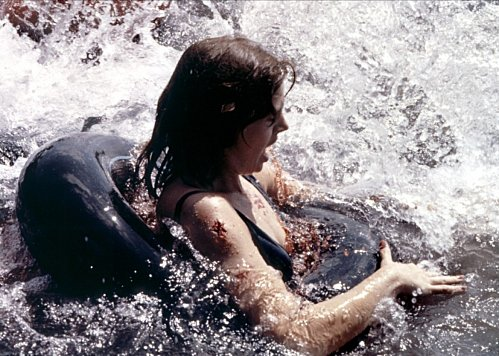 piranhas-1978-04-g
